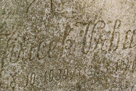 Klobouky u Brna, hřbitovní reportáž - foto 2